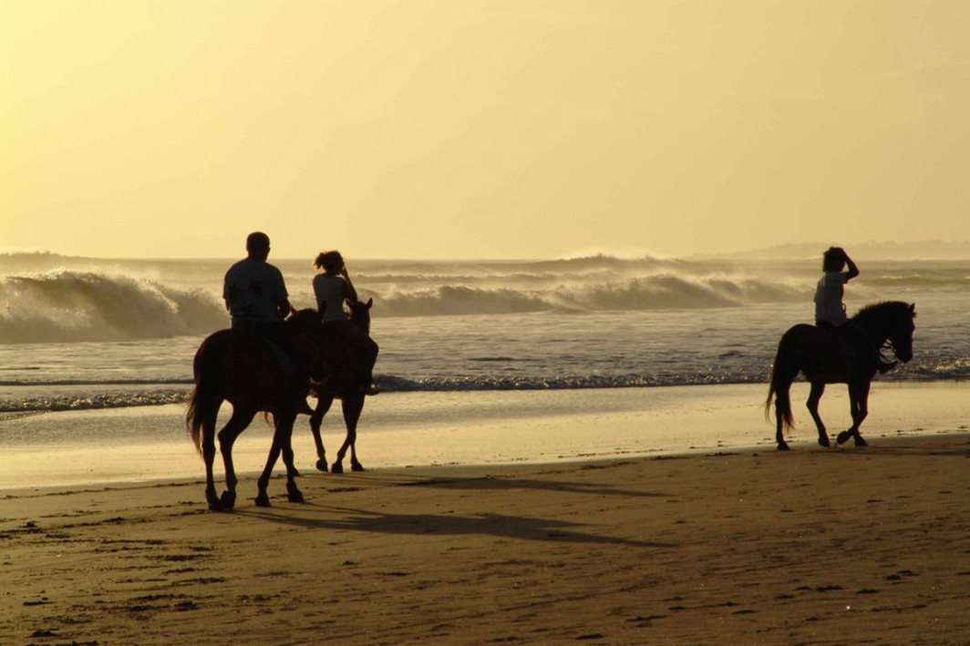 Saddle up and see the sea on horseback